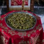 Грожђе са чудотворне лозе Светог Симеона Мироточивог
